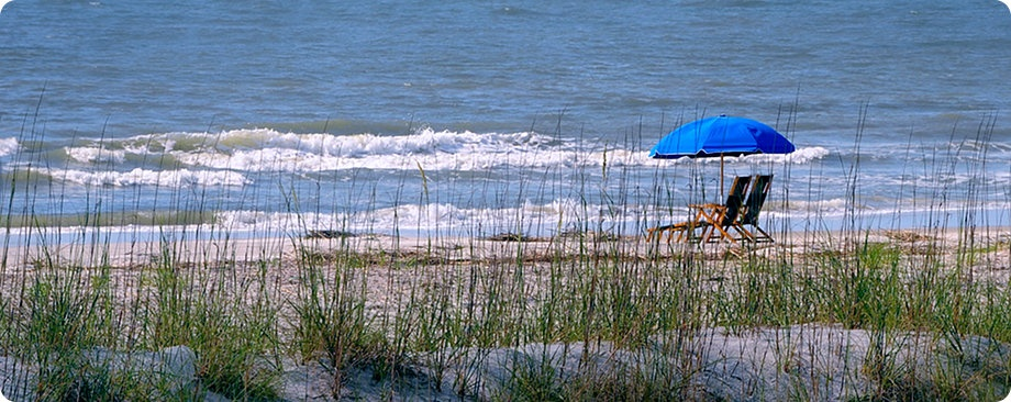 Hilton head island for Hilton head surf fishing